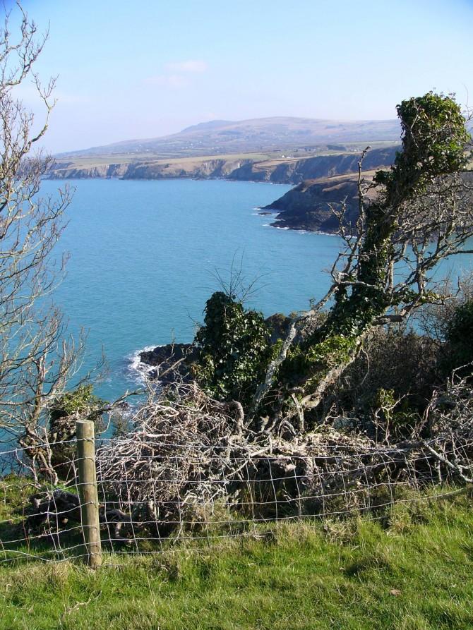 Dinas-Head-Pembrokeshire