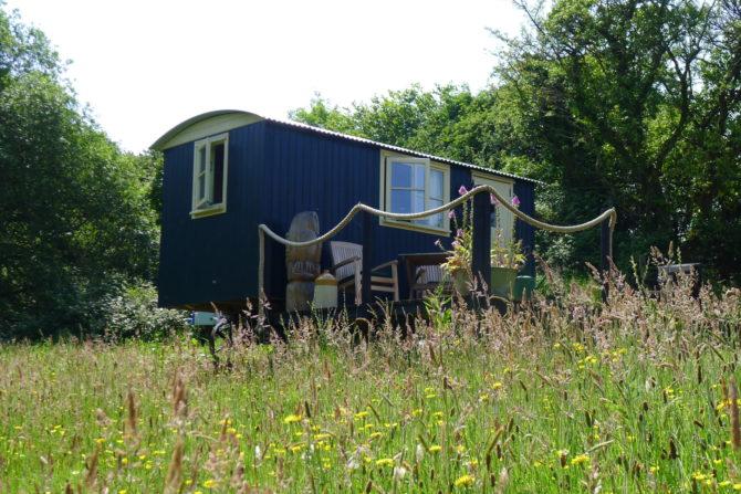 The Shepherds Hut in Spring grass